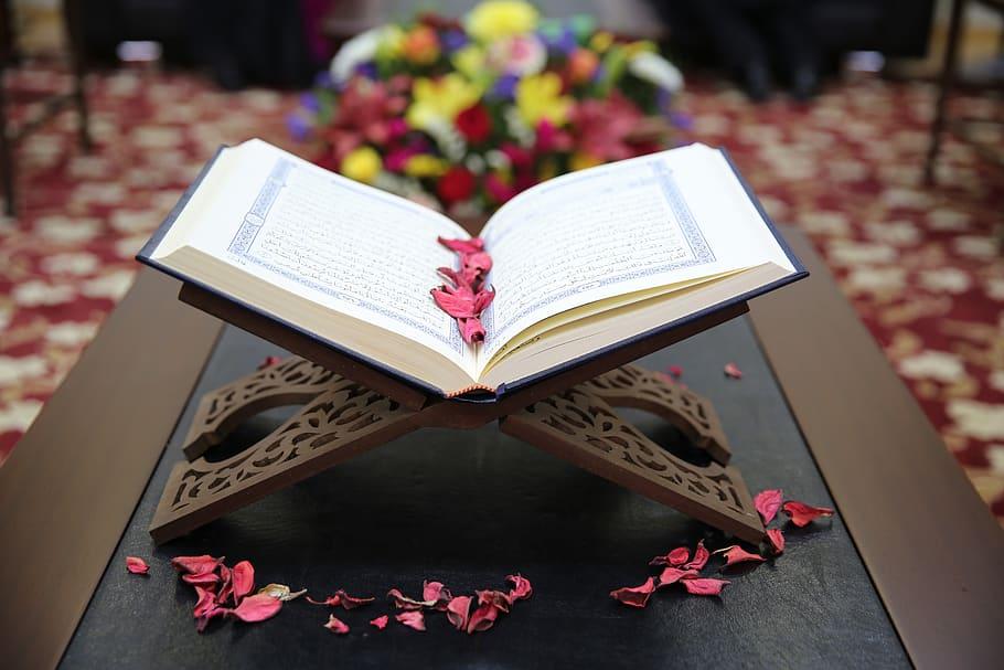 برکات حفظ قرآن
